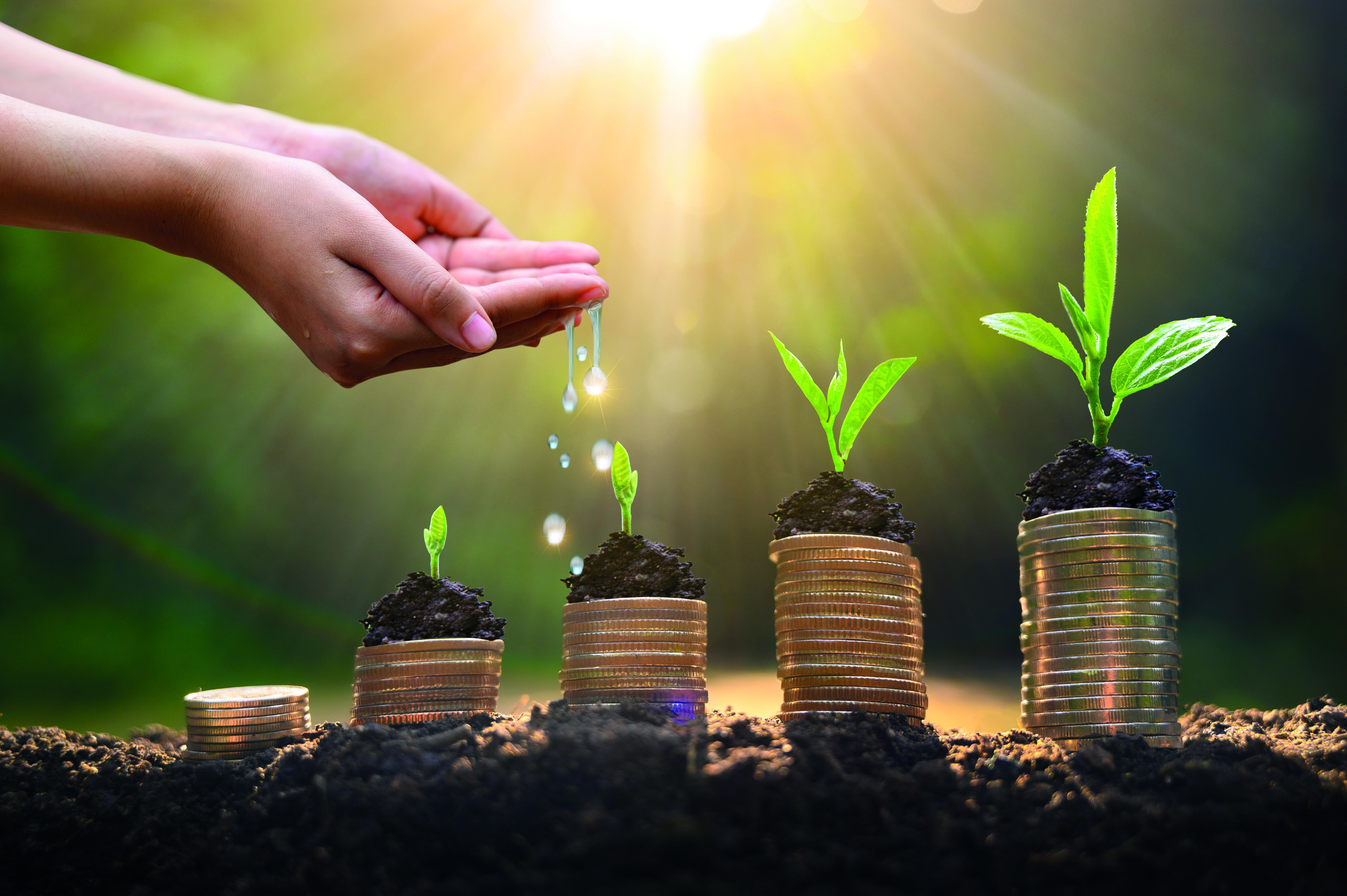 Achats responsables Intégrer le développement durable dans l'achat public
